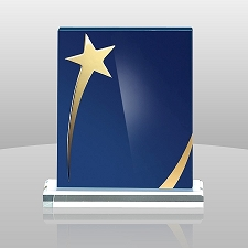 Shining Star Acrylic Award - 3 Sizes - $47 - $56 - $67
